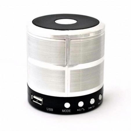 Nešiojama kolonėlė Bluetooth WS-887