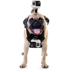 GoPro Fetch 1 veiksmo kameros laikiklis šunims ir katėms