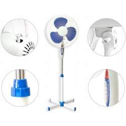 Pastatomas ventiliatorius MX6
