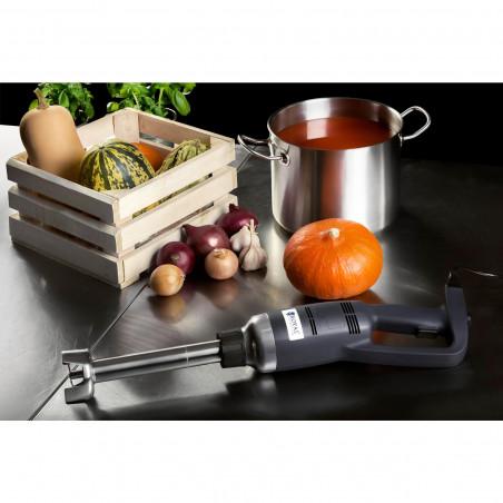 Blenderis Royal Catering - 350 W - 300 mm plakiklis