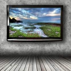 TV laikiklis TVL 311LT | Sieninis televizorių laikiklis
