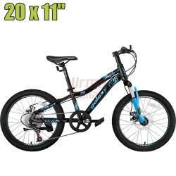 Kalnų dviratis Galaxy MT216 20x11