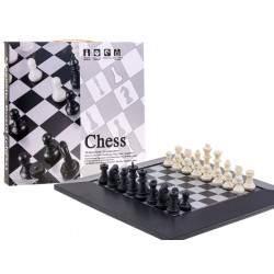Magnetinė šachmatų lenta
