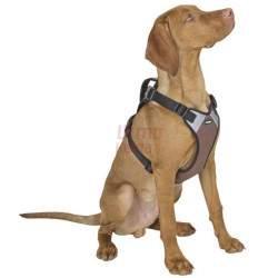 Petnešos šunims Harness Pulsive M